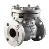 Flanged ANSI 150 Raised Face CS Bolted Cover Check Swing Valves Trim 5